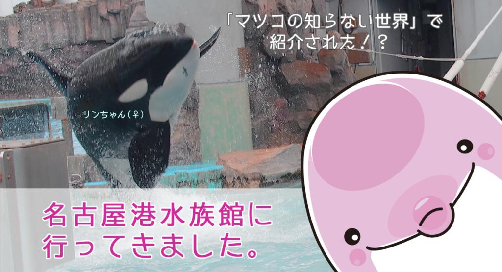 マツコの知らない世界で紹介されたおすすめの水族館、名古屋港水族館に行ってきました