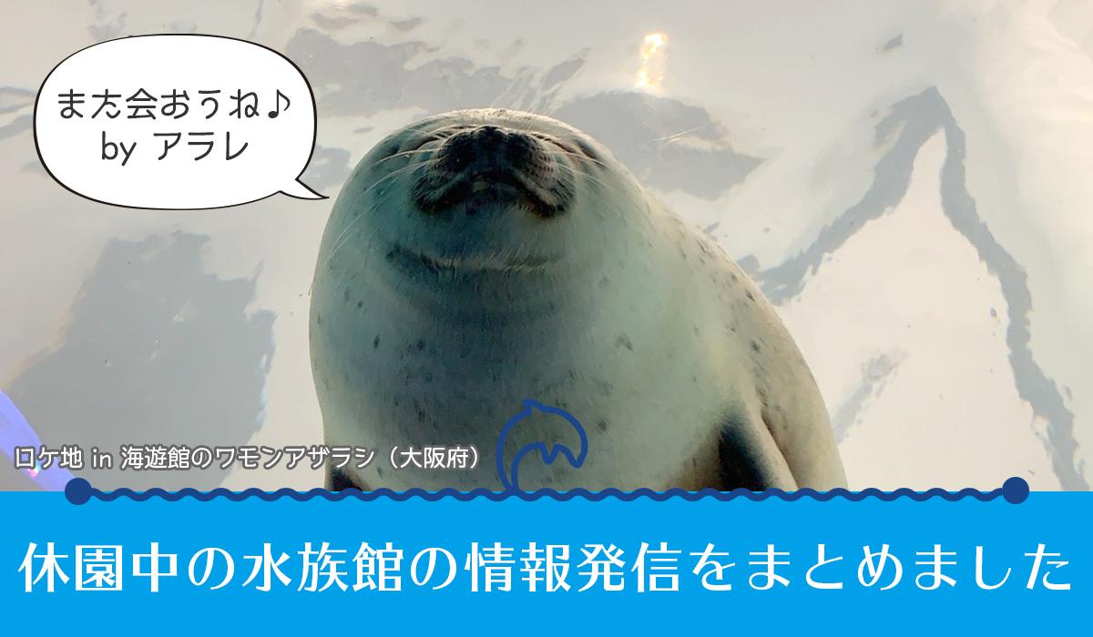 休館中の水族館の情報発信をまとめました
