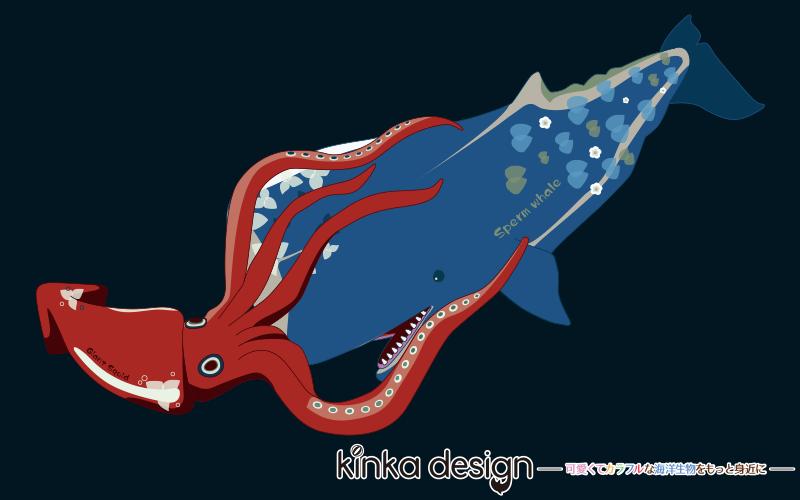 マッコウクジラ VS ダイオウイカ