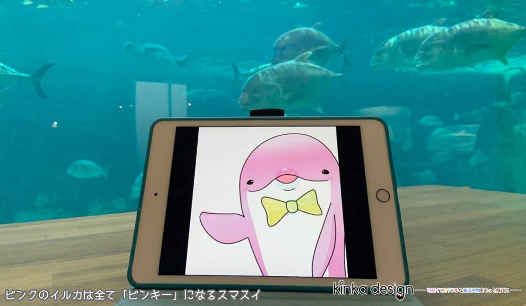 ピンクのイルカは全て「ピンキー」になるスマスイ