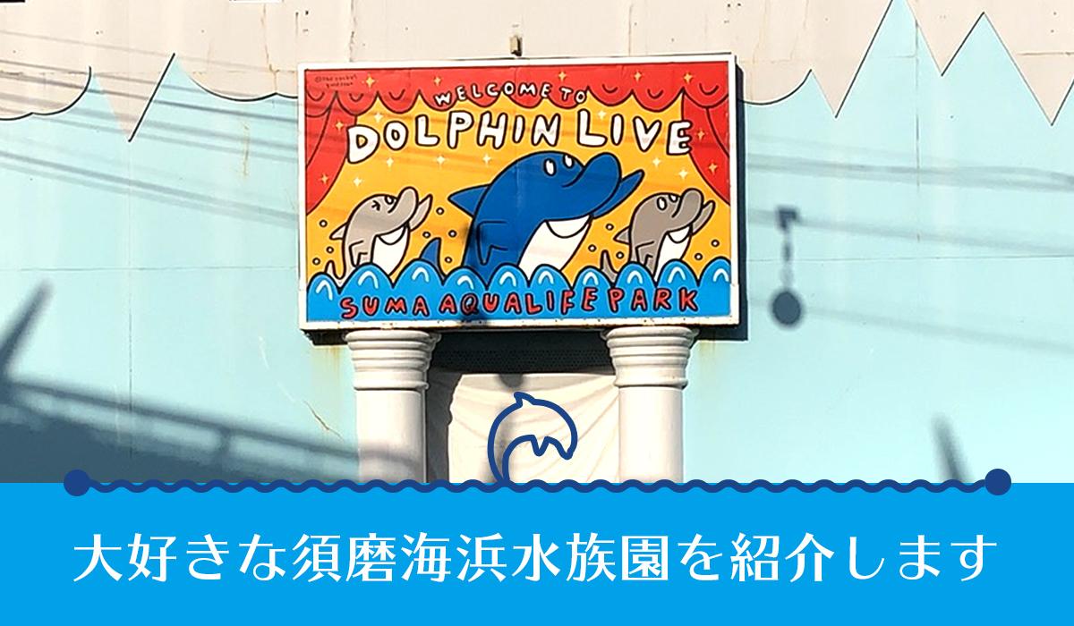 須磨海浜水族園が大好きだ!2020年3月までのスマスイ を紹介します